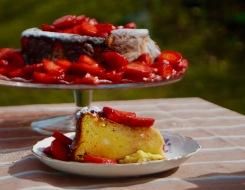 Torta morbida alla ricotta e fragole (senza farina)